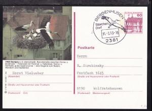 BERGENHUSEN 2381 Storchen-Dorf 31.3.93 auf Ganzsache